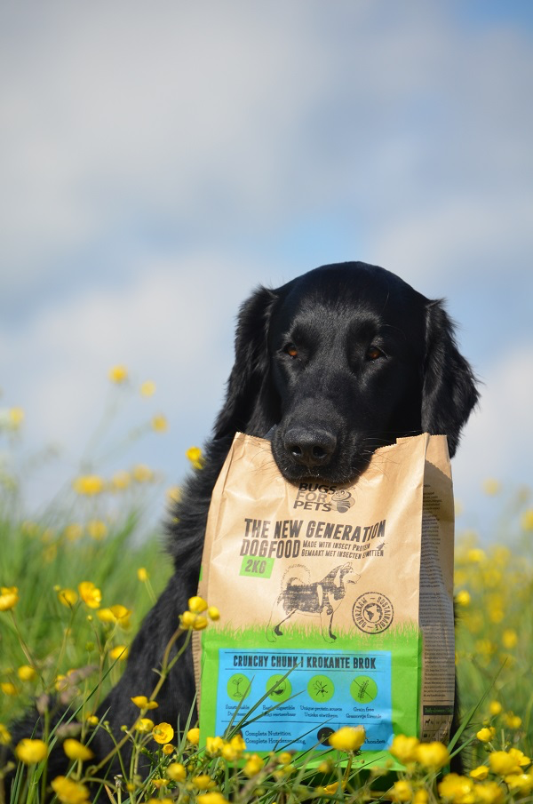 duurzame hondenvoeding